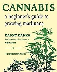 cannabis: a beginners guide to growing marijuana