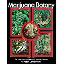 marijuana botany